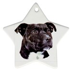Staffie Black ^ Star Ornament (Two Sides)