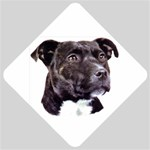 Staffie Black ^ Car Window Sign