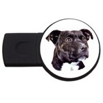 Staffie Black ^ USB Flash Drive Round (4 GB)