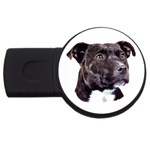 Staffie Black ^ USB Flash Drive Round (2 GB)