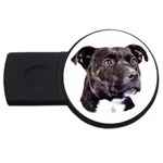 Staffie Black ^ USB Flash Drive Round (1 GB)