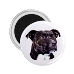 Staffie Black ^ 2.25  Magnet