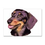 Dachshund Wiener Dog ^ Sticker (A4)