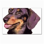 Dachshund Wiener Dog ^ Postcard 4 x 6  (Pkg of 10)