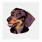 Dachshund Wiener Dog ^ Glasses Cloth (Medium