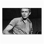 James Dean ^ Postcards 5  x 7  (Pkg of 10)