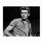James Dean ^ Glasses Cloth (Small