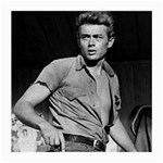 James Dean ^ Glasses Cloth (Medium)