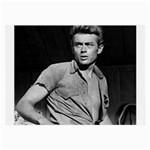 James Dean ^ Glasses Cloth (Large)
