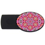 Pink Kaleidescope Fractal USB Flash Drive Oval (2 GB)