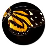 butterfly-pop-art-print-11 Magnet 5  (Round)