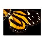 butterfly-pop-art-print-11 Sticker A4 (10 pack)