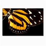 butterfly-pop-art-print-11 Postcard 4 x 6  (Pkg of 10)