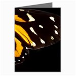 butterfly-pop-art-print-11 Greeting Cards (Pkg of 8)