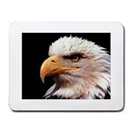 www_pics_am-birds133 Small Mousepad