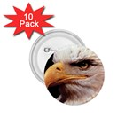 www_pics_am-birds133 1.75  Button (10 pack)