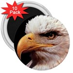 www_pics_am-birds133 3  Magnet (10 pack)