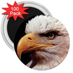 www_pics_am-birds133 3  Magnet (100 pack)