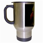 www_pics_am-birds133 Travel Mug (Silver Gray)