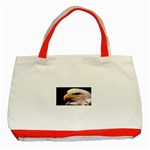www_pics_am-birds133 Classic Tote Bag (Red)