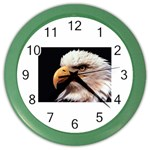 www_pics_am-birds133 Color Wall Clock