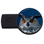www_pics_am-birds207 USB Flash Drive Round (2 GB)