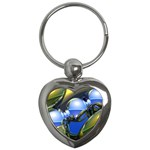 bluegold01b-709182 Key Chain (Heart)