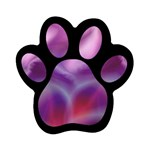 color-galaxy-323371 Magnet (Paw Print)