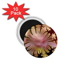 abstract-flowers-984772 1.75  Magnet (10 pack)