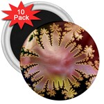 abstract-flowers-984772 3  Magnet (10 pack)