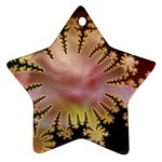 abstract-flowers-984772 Star Ornament (Two Sides)