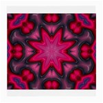 X_Red_Party_Style-777633 Glasses Cloth (Medium, Two Sides)