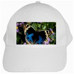 butterfly_4 White Cap