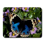 butterfly_4 Small Mousepad