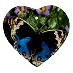 butterfly_4 Ornament (Heart)