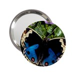 butterfly_4 2.25  Handbag Mirror