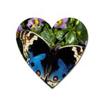 butterfly_4 Magnet (Heart)
