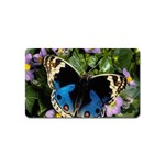 butterfly_4 Magnet (Name Card)