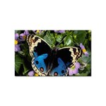 butterfly_4 Sticker Rectangular (100 pack)