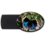 butterfly_4 USB Flash Drive Oval (1 GB)