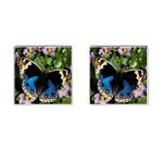 butterfly_4 Cufflinks (Square)