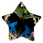 butterfly_4 Star Ornament (Two Sides)