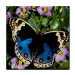 butterfly_4 Tile Coaster