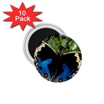butterfly_4 1.75  Magnet (10 pack)