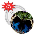 butterfly_4 2.25  Button (10 pack)