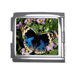 butterfly_4 Mega Link Italian Charm (18mm)