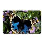 butterfly_4 Magnet (Rectangular)