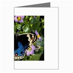 butterfly_4 Greeting Card
