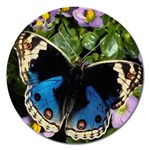 butterfly_4 Magnet 5  (Round)