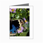 butterfly_4 Mini Greeting Card